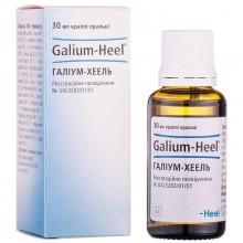 Buy Galium heel bottle 30 ml, 1 pc.