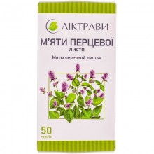 Buy Mint leaf Tea (Pack) 50 g
